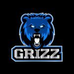 xGrizzx